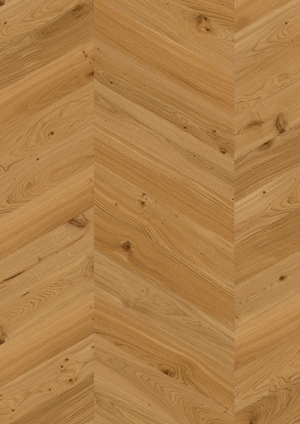Oak Animoso Chevron